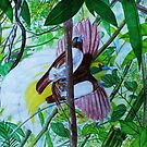 Paradise Birds in Watercolor by leororing