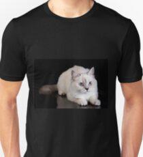 Lovely fluffy kitten charming British cat T-Shirt