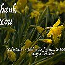 Thank You Daffodil Volunteer by Marilyn Cornwell