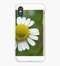 Chamomile Flowers iPhone Case/Skin