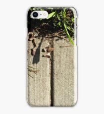 Easel iPhone Case/Skin
