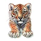 Playful Tiger Cub 907 by schukinart