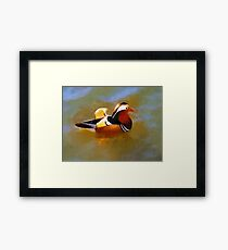 Mandarin Duck Flapping In The Water Framed Print