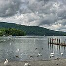 View over Windermere by Tom Gomez