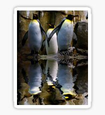 King Penguin, Antarctic, Montreal Biodome Sticker