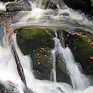 Cascades  by Terri~Lynn Bealle