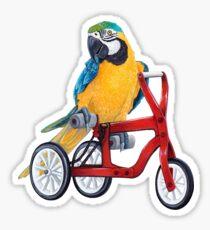 Parrot Macaw bike red Sticker