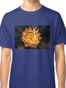The Sunshine Curls Classic T-Shirt