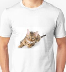 Charming fluffy kitten Abyssinian T-Shirt