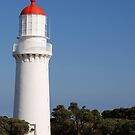 0810 Cape Schank Lighthouse by DavidsArt