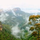 Misty Jamison Valley panorama by Michael Matthews