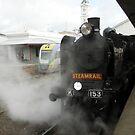 K 153 Steam Loco-Ballarat Station by judygal