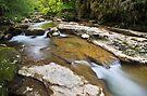 Springtime around Seran river by Patrick Morand