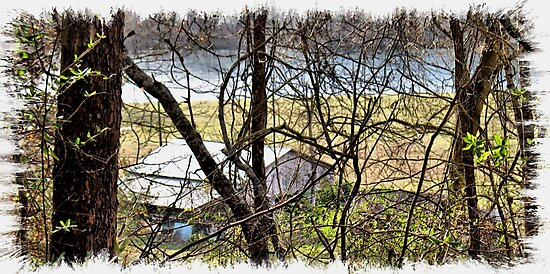 """""""A Sneak Peek of the Old Farm and the Tale Behind It""""... prints and products by Bob Hall©"""