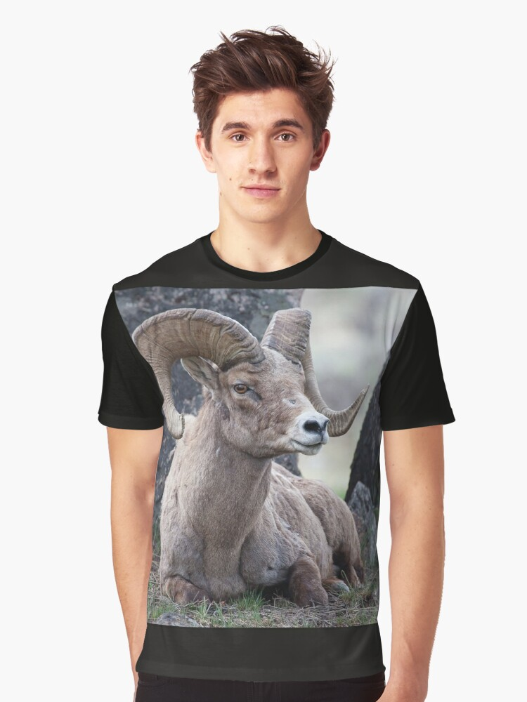 Resting Ram Graphic T-Shirt Front