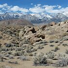 View Of The Sierra Nevada From The Alabama Hills, Inyo County, CA by Rebel Kreklow