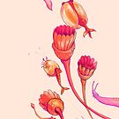 burgess shale buddies - orange & pink by thoughtsupnorth