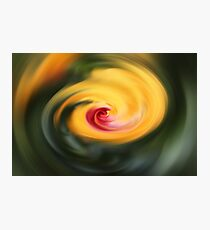 Abstract From Hibiscus  Photographic Print