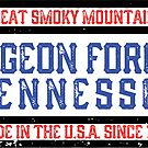 PIGEON FORGE TENNESSEE GREAT SMOKY MOUNTAINS SMOKIES GRUNGE RECTANGLE by MyHandmadeSigns