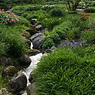 Tiny Creek Through the Green by Georgia Mizuleva