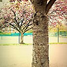 Trees and Tennis Courts by Ms-Bexy