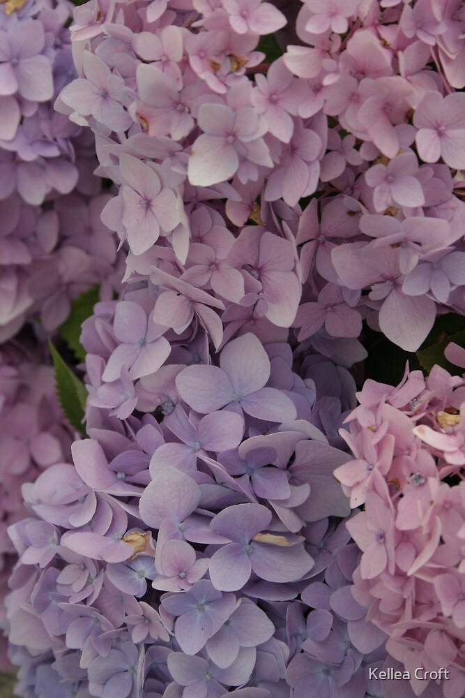 Purple Cloud  by Kellea Croft