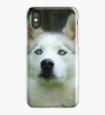 Look Into My Baby Blues!!! - Siberian Husky - NZ iPhone Case/Skin
