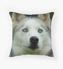 Look Into My Baby Blues!!! - Siberian Husky - NZ Throw Pillow