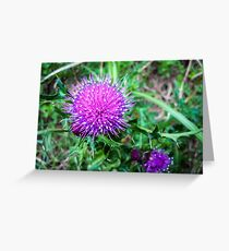 Marian Thistle Greeting Card