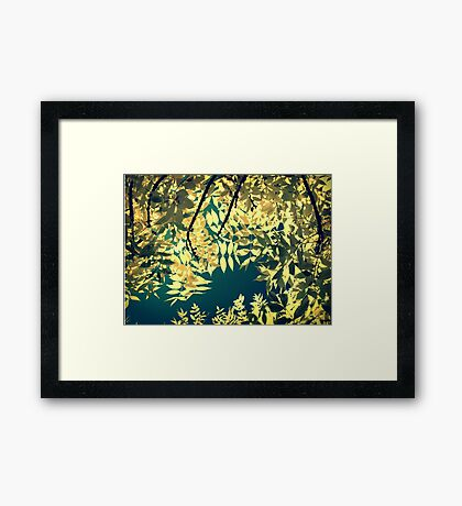 Sunday Sun Framed Print