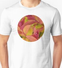 Orange Flame Spirea  T-Shirt