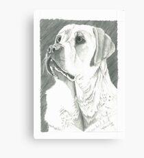 Charlie, Autism Trained Assistant Canvas Print