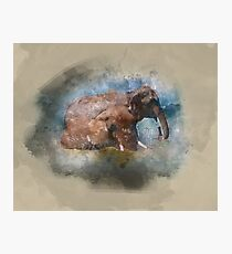 Badende Elefanten - Elephants in watercolour Photographic Print