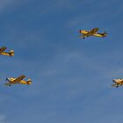 Four Maggies in Formation by Colin Smedley