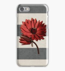 botanical stripes - red water lily iPhone Case/Skin