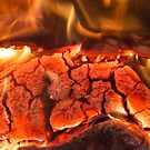 Burning Wood by NuclearJawa