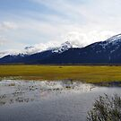 Alaskan Mountains by TheDorkKnight