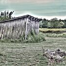 The Old Shed by © CK Caldwell IPA