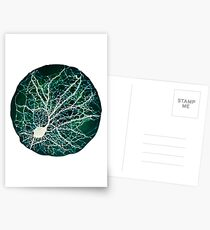 Dendritic tree and spines of an hippocampal neuron - Nebula Postcards