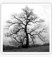 WINTER PRINCESS TREE Sticker
