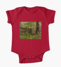 Colorful Tulips and a Rustic Fence - Enjoying the Beauty of Spring Kids Clothes