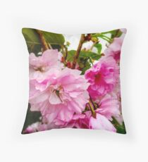 The Last Of The Cherry  blossoms  Throw Pillow