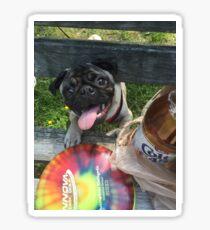 Pug disc golf Sticker