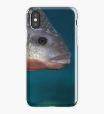 Here Fishy Fishy Fishy!  iPhone Case/Skin
