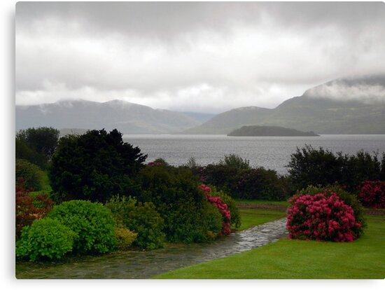 Late Afternoon Rain over Lake in Killarney by Lucinda Walter
