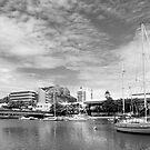 Ross Creek Townsville by Paul Gilbert
