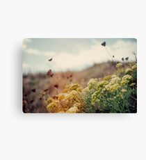 Meadow of Wildflowers Canvas Print