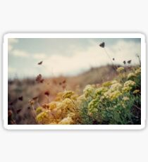 Meadow of Wildflowers Sticker