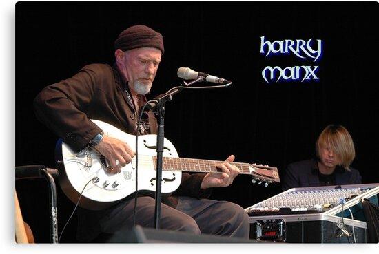 Harry Manx @ Jazz & Blues Festival 2010 by muz2142