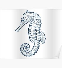Seahorse sea horse nature ocean aquatic underwater vector. Hand drawn marine engraving illustration on white background Poster